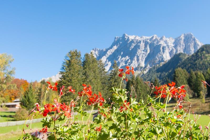 Vue d'Alpes de Zugspitze d'Ehrwald, le Tirol, Autriche photographie stock