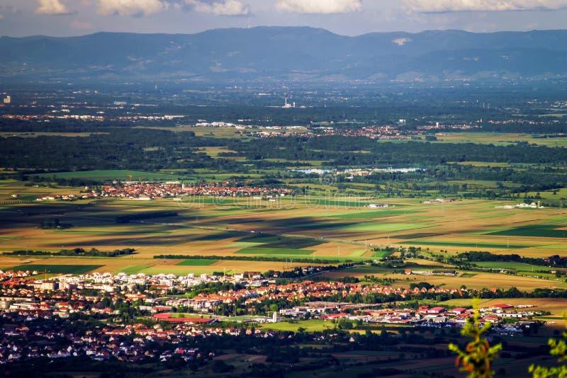 vue d'Alsace d'Oiseau-mouche image stock