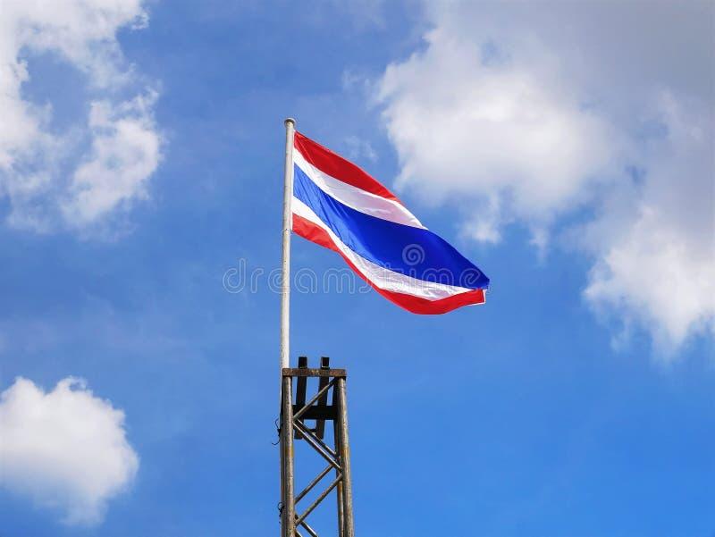 Vue d'angle faible de drapeau national thaïlandais onduleux photos libres de droits