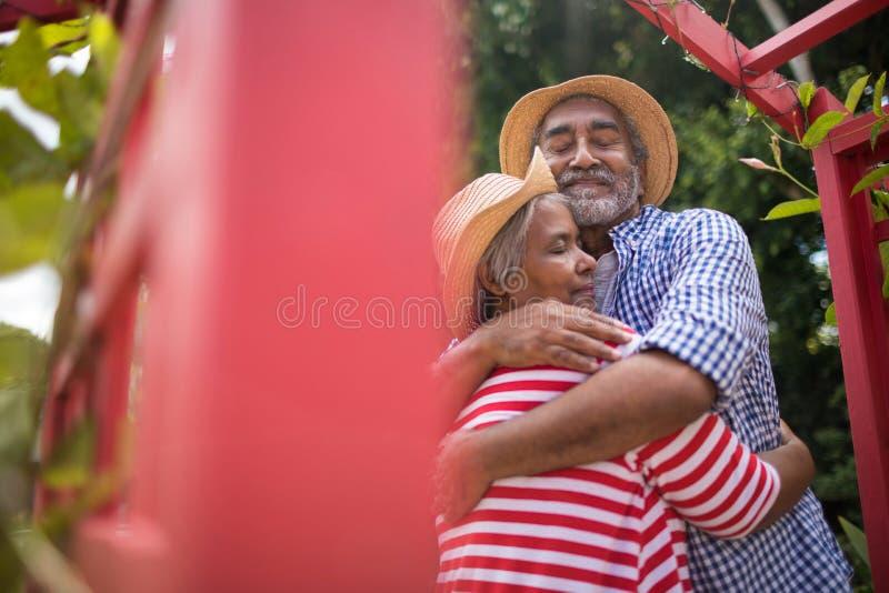 Vue d'angle faible de l'embrassement supérieur affectueux de couples photographie stock libre de droits