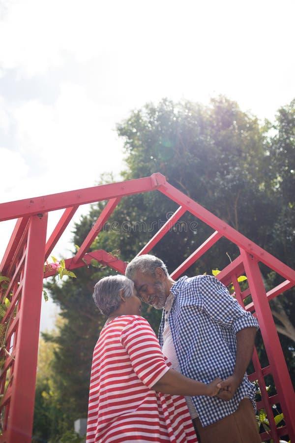 Vue d'angle faible des couples supérieurs affectueux contre le ciel images libres de droits