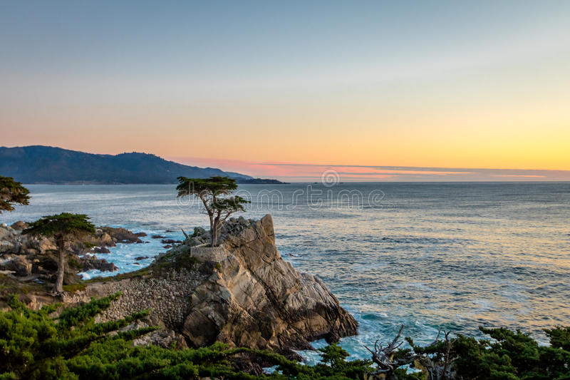 Vue d'arbre solitaire de Cypress au coucher du soleil le long de la commande célèbre de 17 milles - Monterey, la Californie, Etat image stock