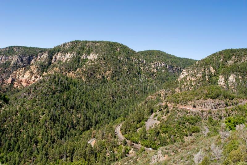 vue d'arbres scénique de montagne photo stock