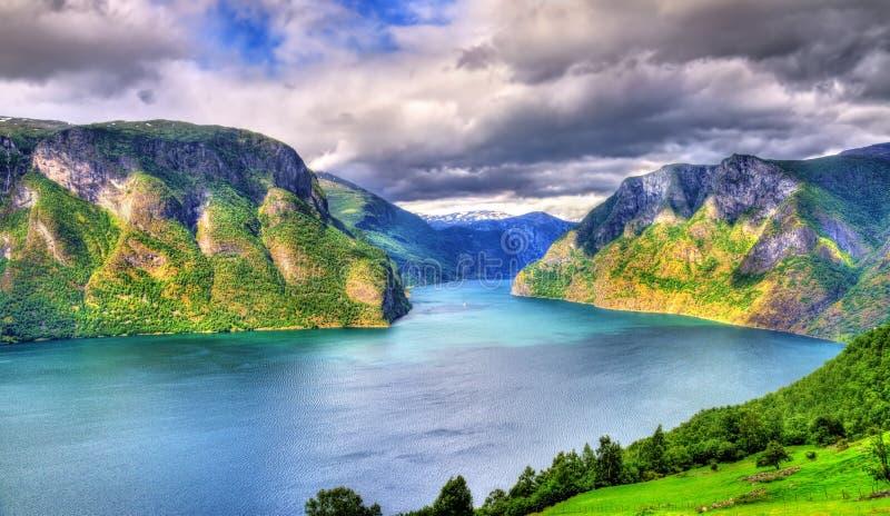 Vue d'Aurlandsfjord de point de vue de Stegastein - Norvège photo libre de droits