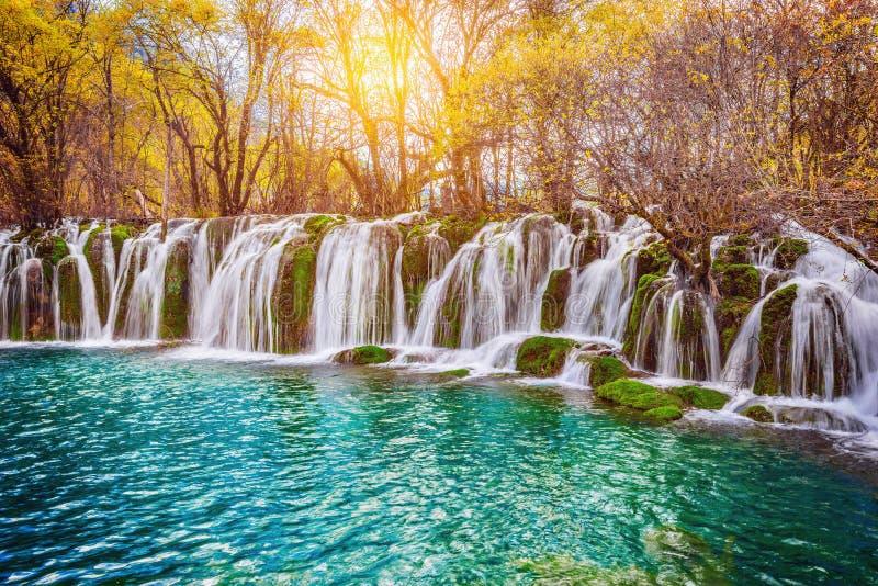 Vue d'automne de la cascade avec de l'eau pur au temps de lever de soleil image libre de droits