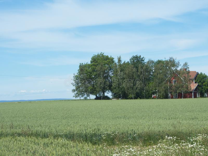 Vue d'ensemble de l'île suédoise Visings image stock