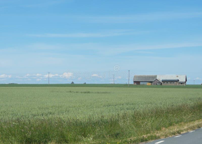 Vue d'ensemble de l'île suédoise Visings image libre de droits