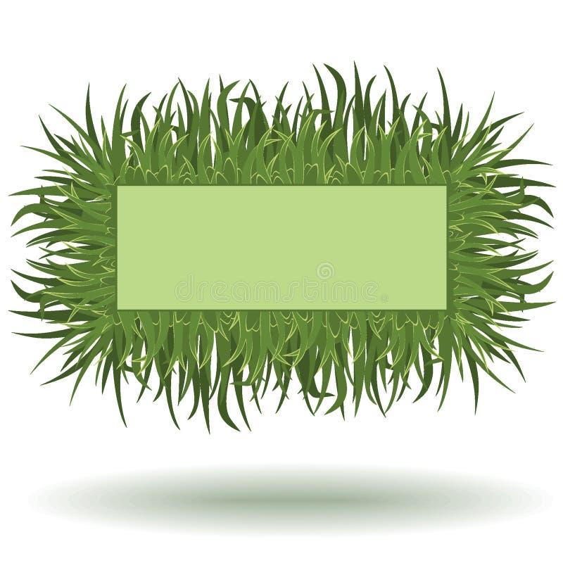 Vue d'herbe photographie stock libre de droits