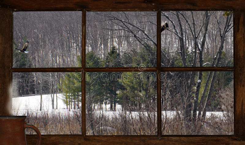 Vue d'hiver. photo stock