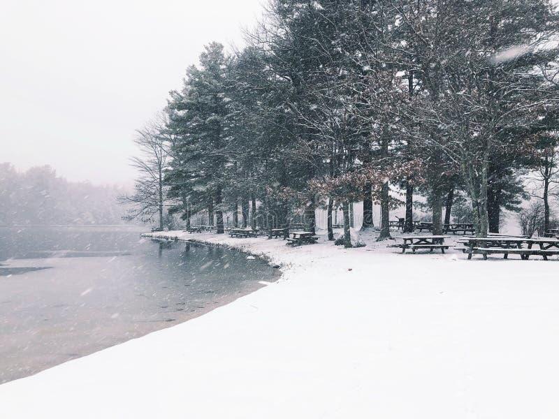 Vue d'hiver de parc d'état d'étang de bavures images stock