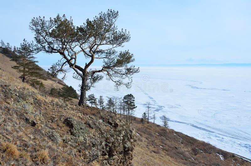 Vue d'hiver du lac Baïkal, pli Malaya Kodilnaya photographie stock libre de droits
