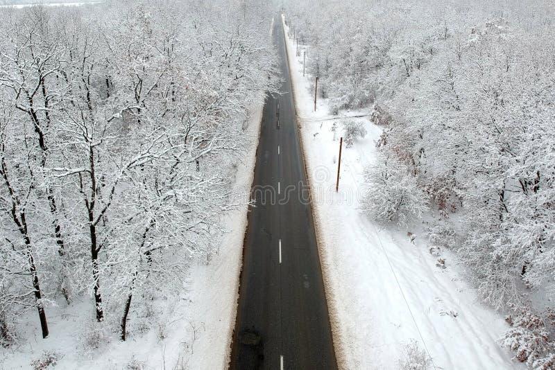 Vue d'hiver d'une route au milieu de la forêt photographie stock