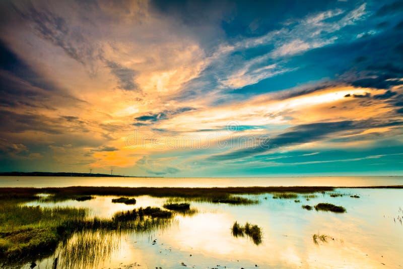 Vue d'horizontal tropical de zone humide au lever de soleil image libre de droits