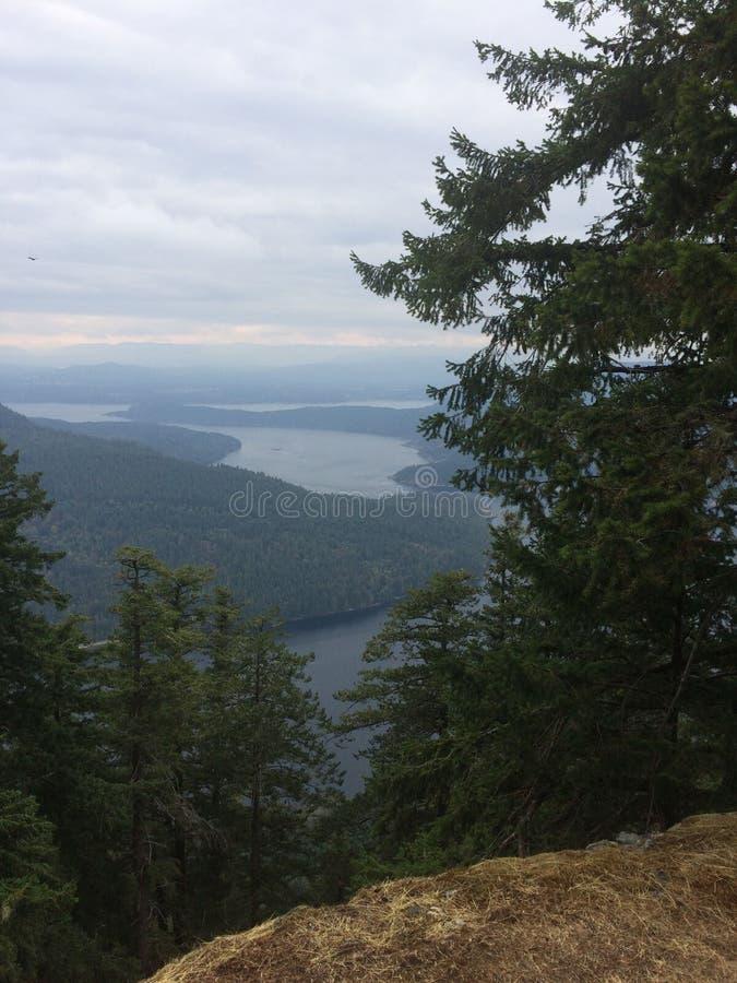 Vue d'océan et de forêt images stock