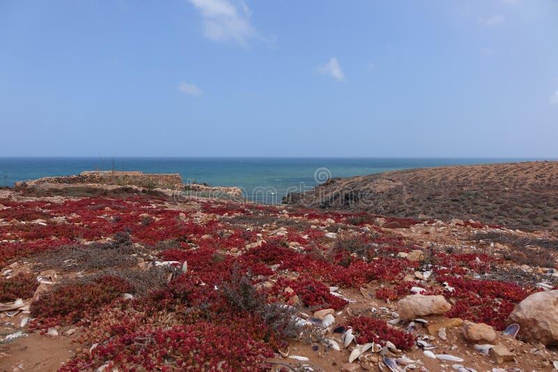 Vue d'océan, Maroc photo stock