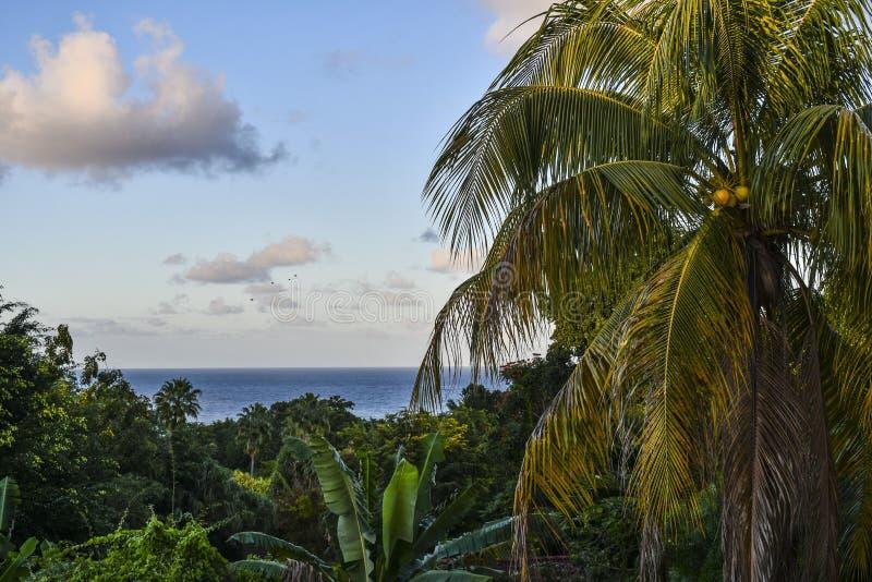 Vue d'océan Ocho Rios Jamaïque image stock