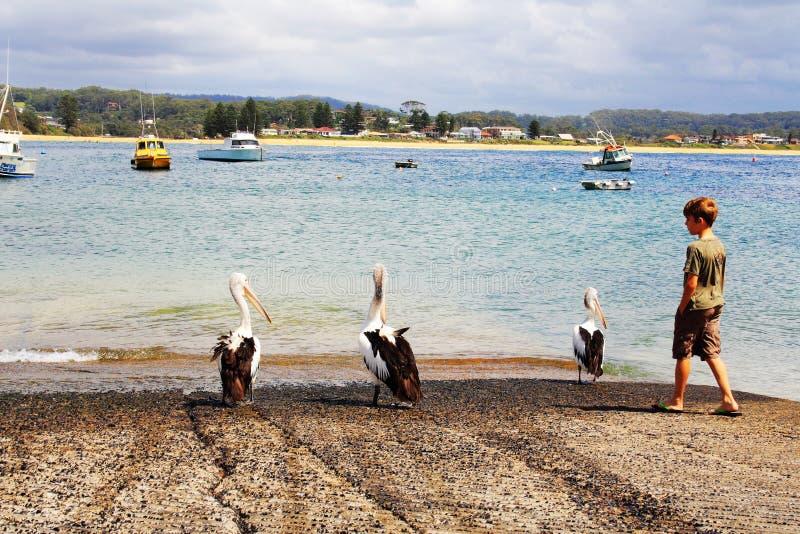 Vue d'océan @ Terrigal, Australie images libres de droits