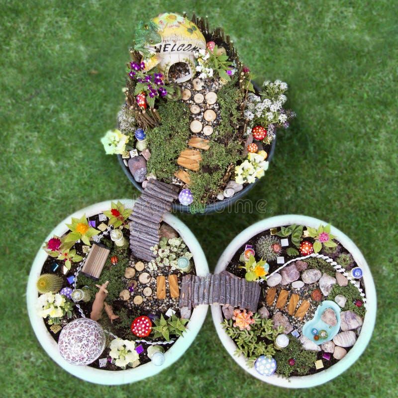 Vue d'oeil d'oiseaux de jardin féerique dans un pot de fleur photo stock
