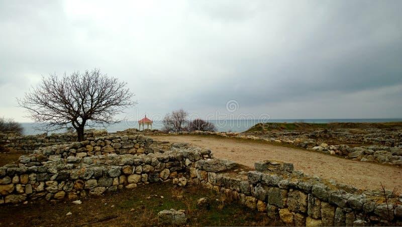 Vue d'un arbre et d'un mur en pierre dans Hersonissos Tauride image libre de droits