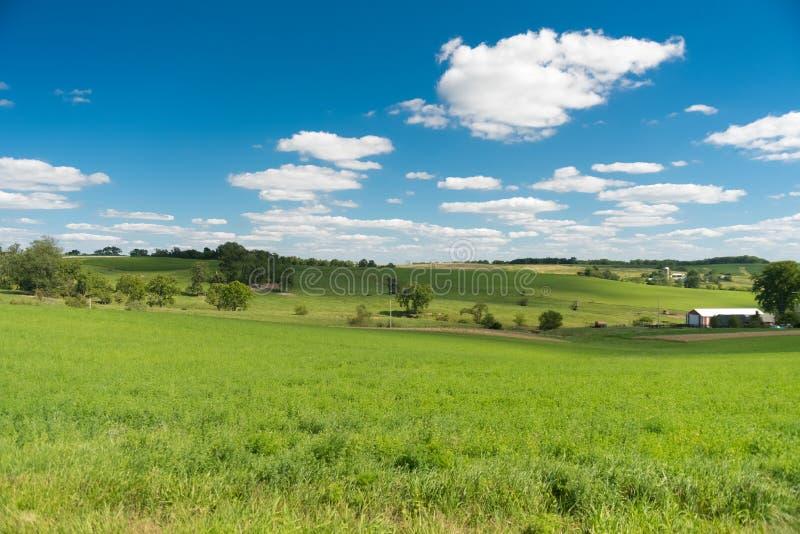 Vue d'un champ dans le côté de pays de l'Illinois image libre de droits