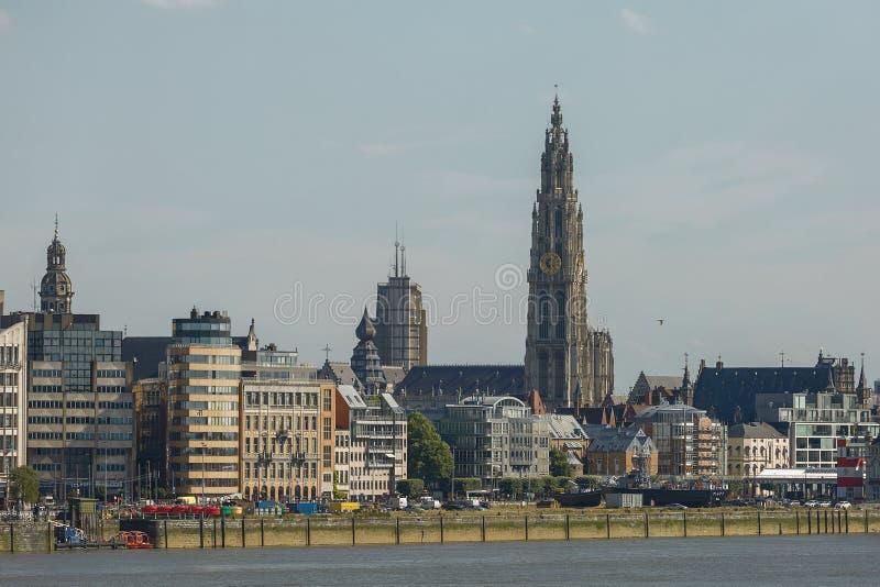 Vue d'un port d'Anvers et de cathédrale de notre dame en Belgique o images stock