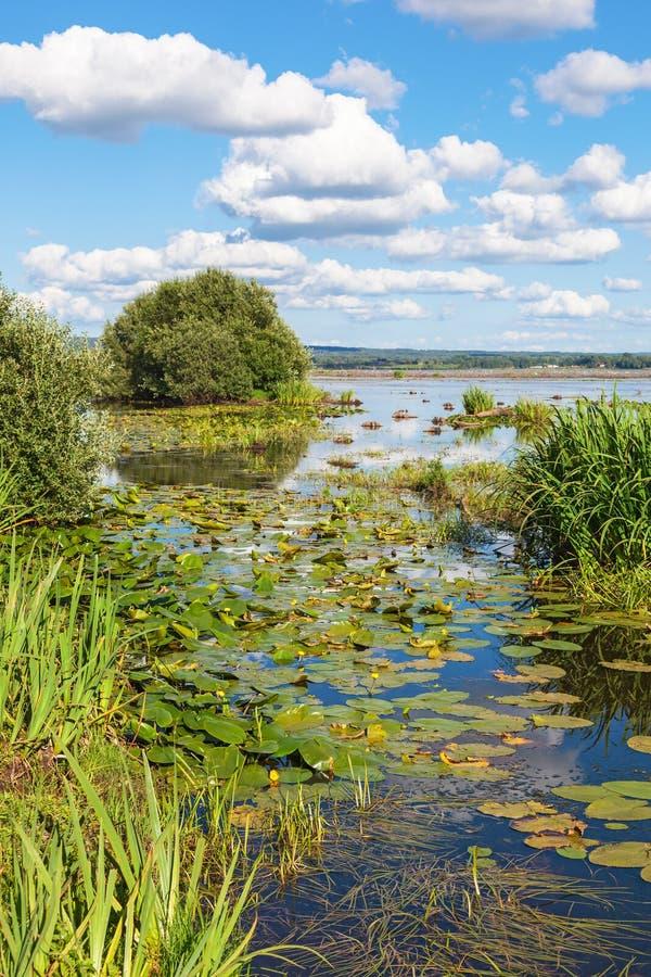 Vue d'une baie dans le lac images libres de droits