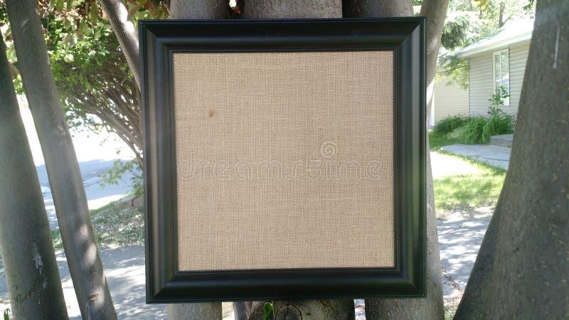 Vue dans les arbres photographie stock