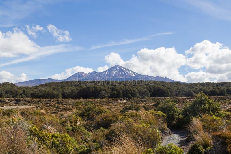 Vue de bâti Ruapehu photo libre de droits