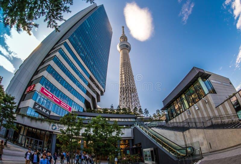 Vue de bâtiment de Skytree à Tokyo image stock