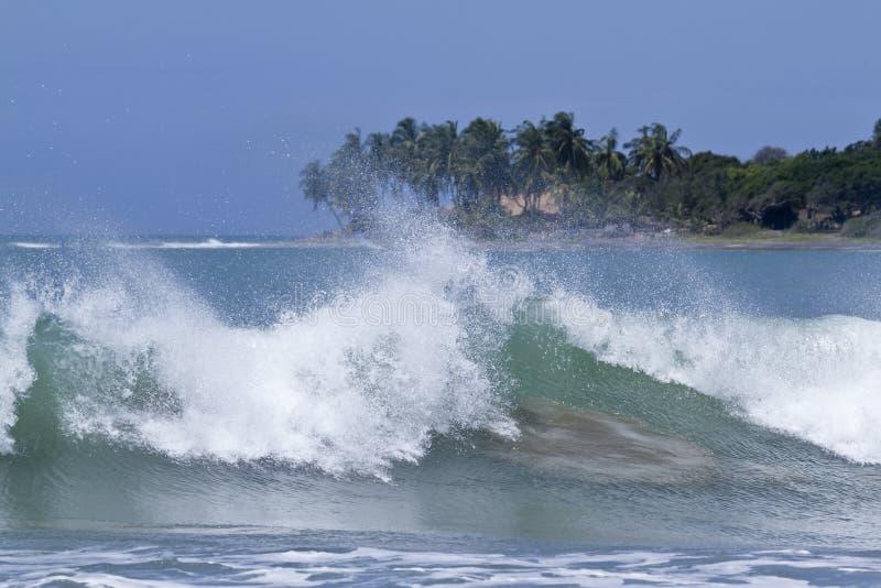 Vue de baie d'Arugam, Sri Lanka photographie stock libre de droits