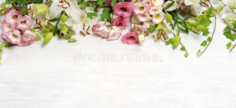 Vue de belles fleurs photo stock