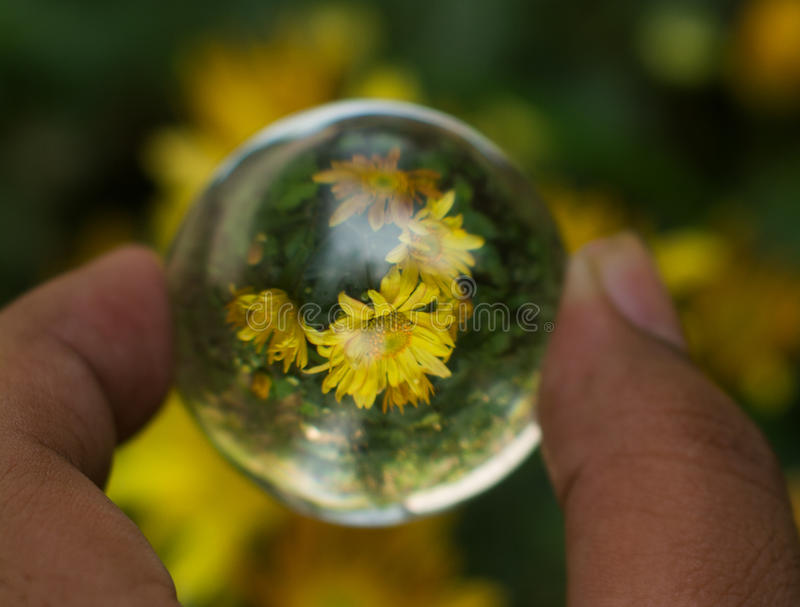 Vue de boule en verre image stock