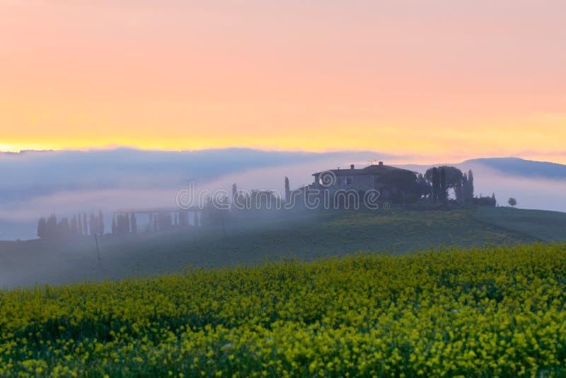 Vue de brouillard de matin sur la ferme en Toscane, Italie image stock