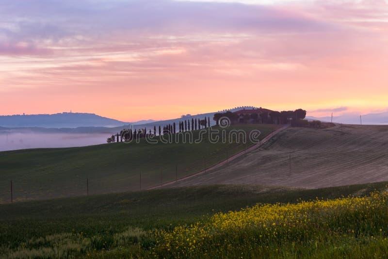 Vue de brouillard de matin sur la ferme en Toscane, Italie photos libres de droits