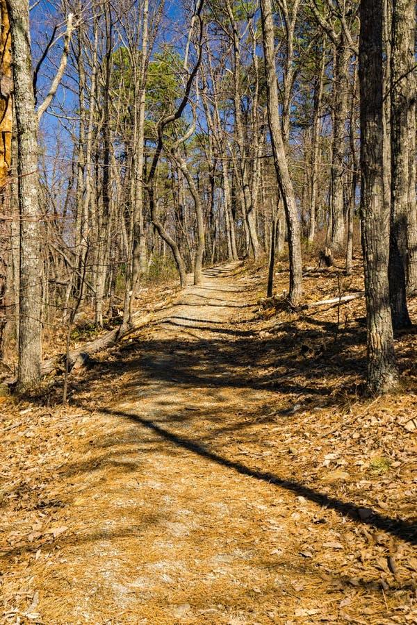 Vue de Buck Mountain Trail photos stock