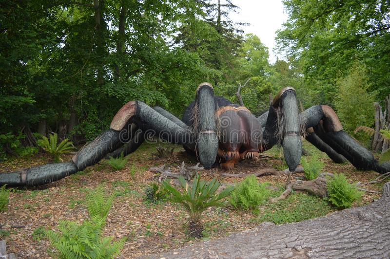 Vue de côté au grand modèle de l'araignée noire image libre de droits