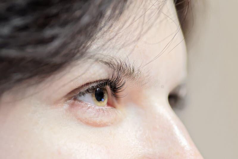 Vue de côté d'oeil de femme avec de longs cils photographie stock libre de droits