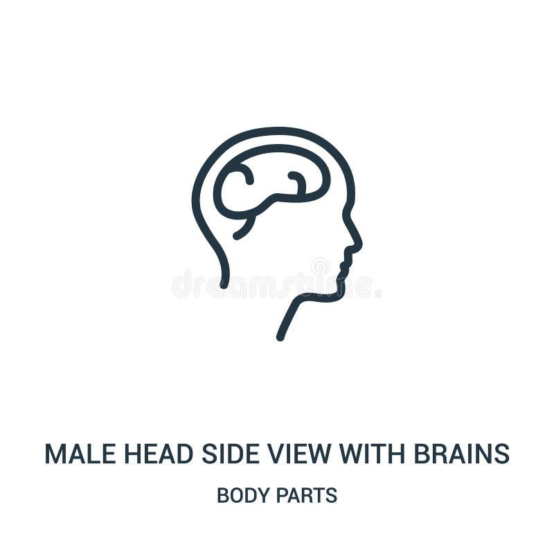 vue de côté principale masculine avec le vecteur d'icône de cerveaux de la collection de parties du corps Ligne mince vue de côté illustration libre de droits