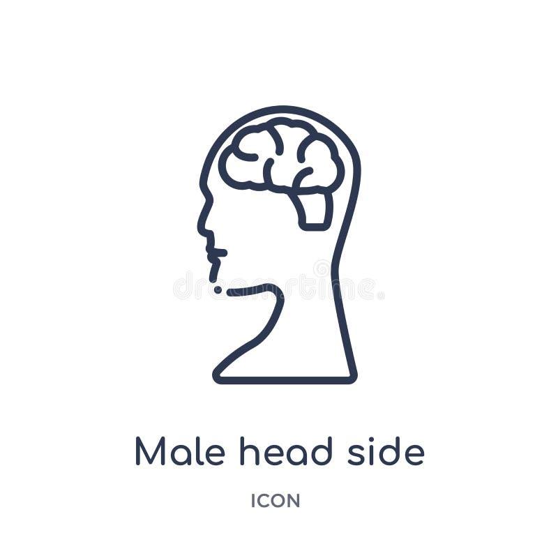 Vue de côté principale masculine linéaire avec l'icône de cerveaux de la collection d'ensemble de pièces de corps humain Ligne mi illustration stock