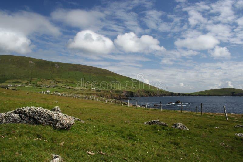Vue de côte de péninsule de Dingle de pâturage photos libres de droits
