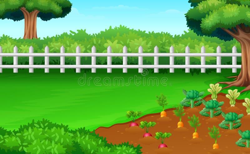 Vue de champs de ferme dans la lumière du jour illustration libre de droits