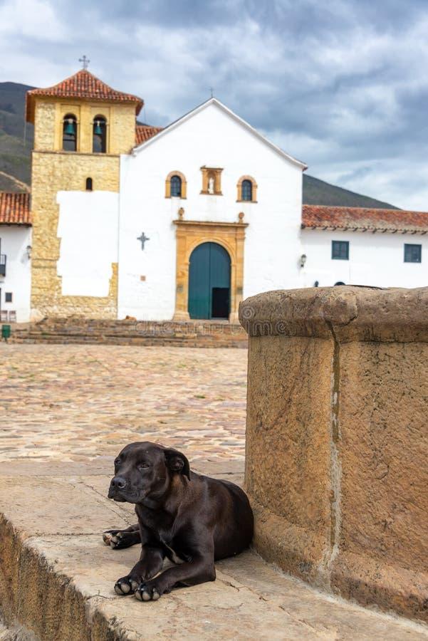 """Résultat de recherche d'images pour """"chien dans une église"""""""