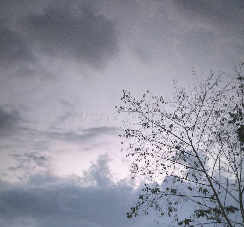 Vue de ciel dans l'après-midi image stock