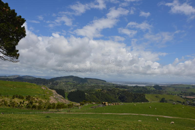 Vue de colline de Papamoa image stock