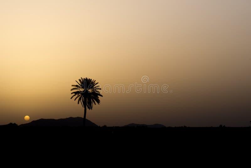 Vue de désert de lever de soleil de Maroc Marrakech photographie stock