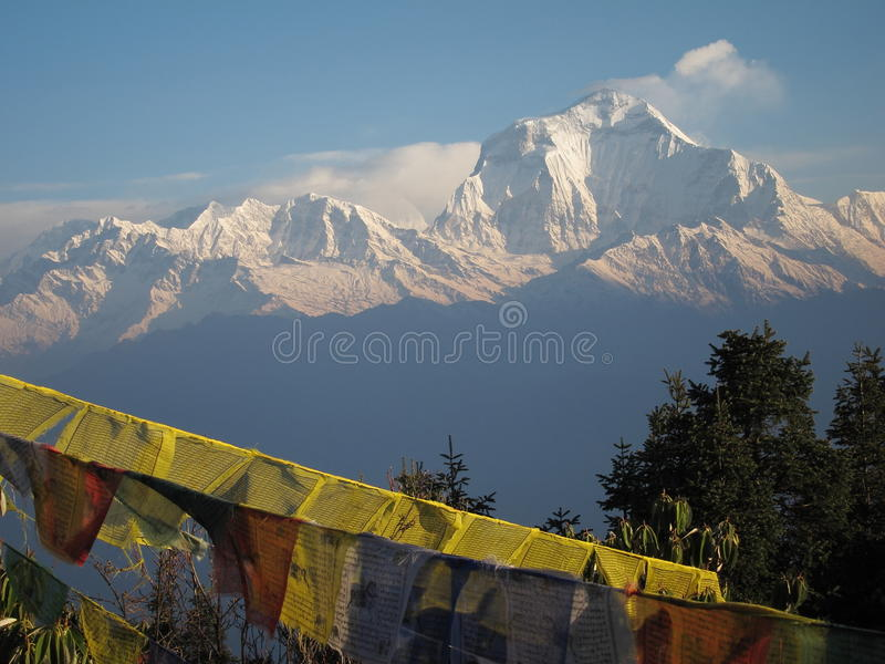 Vue de Dhaulagiri de Poon Hill images libres de droits