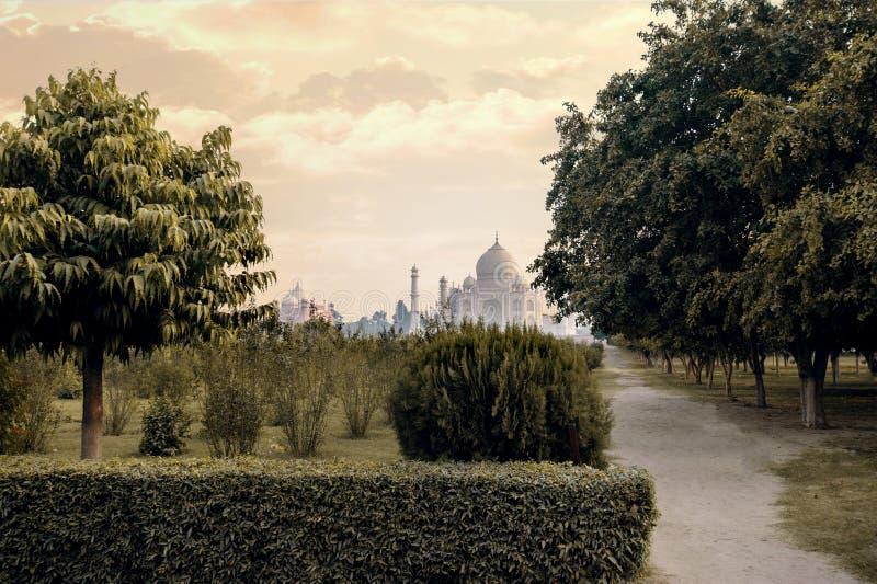 Vue de dos de mausolée de Taj Mahal de Mehtab Bagh photo libre de droits