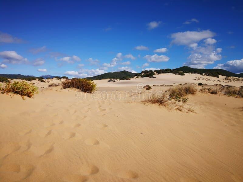 Vue de dune de Piscinas en Sardaigne, un désert naturel image libre de droits