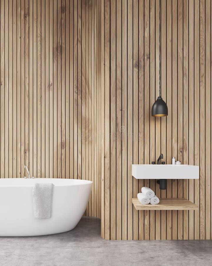 Vue de face d'évier et de baignoire illustration stock