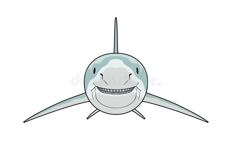 Vue de face de requin illustration de vecteur